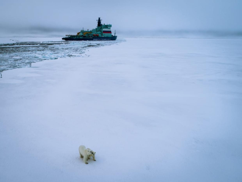 Barco de transportador de gas ruso realizó el primer viaje en dirección este de la Ruta del Mar del Norte