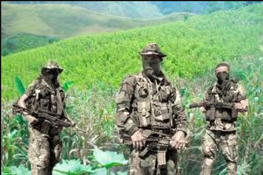 Califican de infame el resurgimiento del paramilitarismo en Colombia