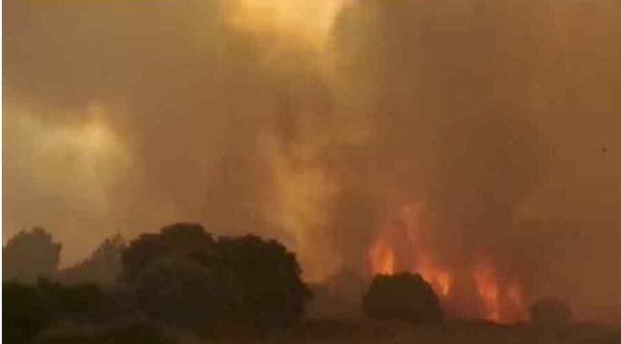 (Video) La Unión Europea envía ayuda a Italia mientras cientos son evacuados de la isla de Cerdeña en medio de incendios forestales que duran días