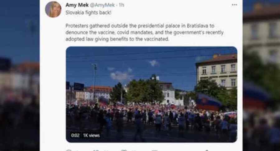 Los manifestantes toman las calles de la capital de Eslovaquia, bloqueando carreteras para protestar contra la ley de la vacunación del Covid