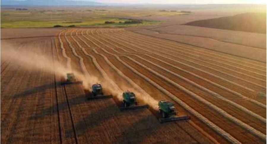 Rusia aumentará los derechos de exportación de cereales para apoyar a los productores nacionales